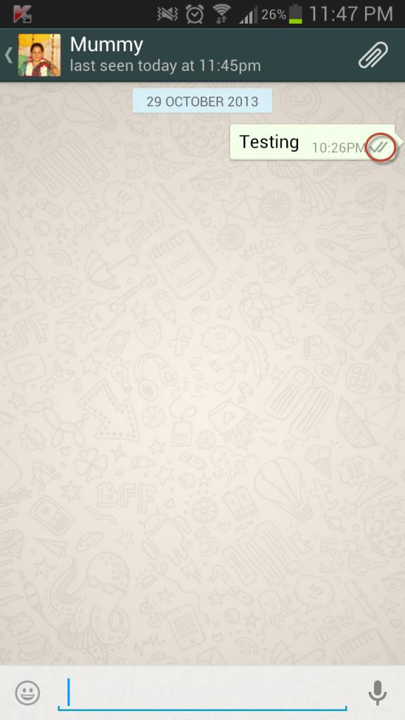 whatsapp 2 ticks